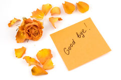 Note. Orange note paper with inscription good bye, rose bud and petals isolated over white Royalty Free Stock Photos