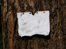 The note attached to a tree Royalty Free Stock Photos
