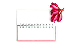 Note book paper with pink frangipani flower Stock Photo