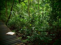 Note Book on rainforest trail Royalty Free Stock Photos