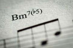 Note de musique de feuille Photo stock