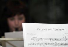 Note di musica Fotografie Stock Libere da Diritti
