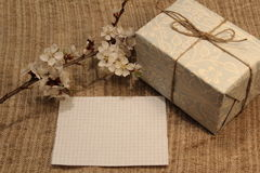 Note, gift and blossom branch. A sheet of note paper, a gift and a flowering branch royalty free stock images