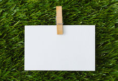 Note in green grass Royalty Free Stock Images