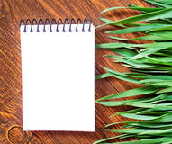 Note and green grass Royalty Free Stock Photography