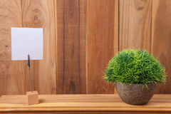 Note holder and plant Stock Photo