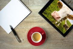 Note pad with ballpoint pen and computer tablet with cattle pict. Ure on a pasture Stock Photography
