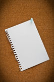 Note paper. On cork board Royalty Free Stock Image