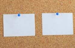Note paper pined on cork board background Stock Image