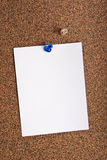 Note paper tacked on a cork board Royalty Free Stock Photos