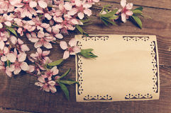 Note, postcard, writing retro peach blossoms on a wooden vintage stock photography