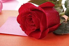 Note with rose royalty free stock images