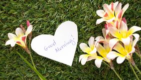 Note in shape of heart with words Good Morning!. With flowers on green grass Royalty Free Stock Photos
