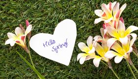 Note in shape of heart with words Hello Spring!, with flowers . Note in shape of heart with words Hello Spring!, with flowers on green grass Stock Photography
