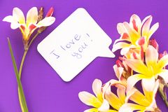Note in shape of heart with words . Note in shape of heart with words `I love you!` with flowers on purple surface Royalty Free Stock Photos