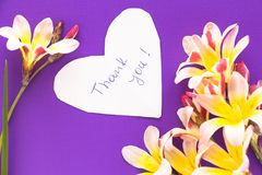 Note in shape of heart with words. Note in shape of heart with words `Thank You!` with flowers on purple surface Royalty Free Stock Photography