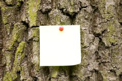 Note On The Tree Royalty Free Stock Photos