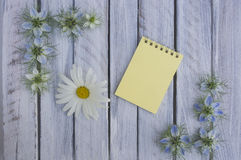 A note on a wooden surface framed by flowers 7 stock photos