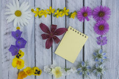 A note on a wooden surface framed by summer flowers 6 Stock Photos