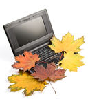 Notebook And Autumn Leaves Royalty Free Stock Photo