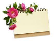 Notebook and aster flowers Stock Photography