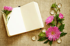 Notebook and asters. On canvas background Royalty Free Stock Photo