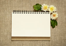 Notebook and asters in a corner Royalty Free Stock Photo