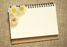 Notebook with asters. On gray canvas background Stock Photos