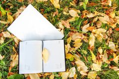 Notebook  on autumn leafs Stock Photography