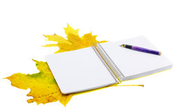 Notebook and autumn leaves. Opened notebook, �������� the handle and autumn leaves Royalty Free Stock Photos