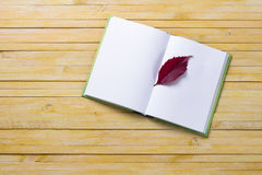 Notebook with autumn leaves on yellow colored wooden bac Stock Photography