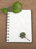 Notebook background on canvas with a backdrop of black pepper be. Rries and leaves Royalty Free Stock Photo