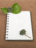 Notebook background on canvas with a backdrop of black pepper be. Rries and leaves Stock Photo