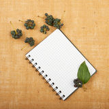 Notebook background on canvas with a backdrop of black pepper be. Rries and leaves Royalty Free Stock Image