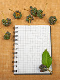 Notebook background on canvas with a backdrop of black pepper be. Rries and leaves Stock Photos