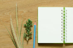 Notebook blank diary. Blank open notebook with lined paper Royalty Free Stock Photography