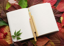 Notebook with blank pages and a wooden color pencils on autumn leaves Stock Photo