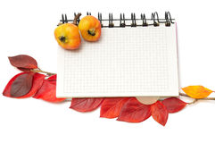 Notebook with bookmark of red leafs Stock Photos