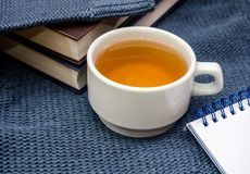 Notebook, books and cup of tea on a warm, blue sweater stock images