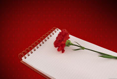Notebook & carnation on hearts background (Path) Stock Photos