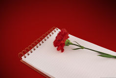 Notebook & carnation on red background with path Stock Images