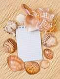 Notebook and cockleshell Royalty Free Stock Images
