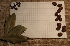 A notebook with coffee beans, laurel leaves and cloves for notes. Notepad for notes with coffee beans, bay leaves and clove seeds royalty free stock images