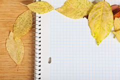 Notebook with colored autumn leaves. Royalty Free Stock Images