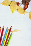 Notebook with colored pencils and autumn leaves Royalty Free Stock Photo