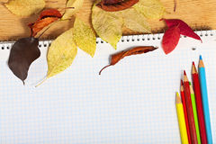 Notebook with colored pencils and autumn leaves. Royalty Free Stock Image