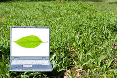 Notebook computer in nature Royalty Free Stock Photo