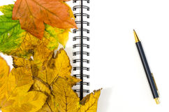 Notebook covered by leaves with a pen Stock Photo