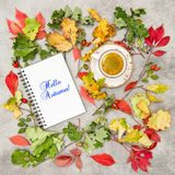 Notebook cup black coffee Flat lay background autumn. Notebook and cup of black coffee. Flat lay background. Hello Autumn Royalty Free Stock Photos