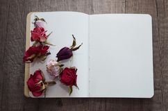 Notebook and dried roses. Royalty Free Stock Images
